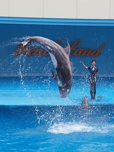 20110815_655shuusei.jpg