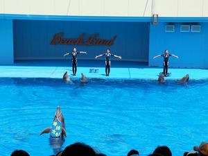 20111011_69shuusei.jpg