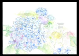 アナログ背景 花