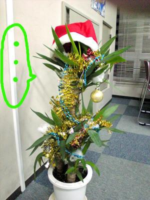 青年の樹クリスマスバージョン
