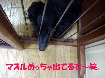 090719_6.jpg