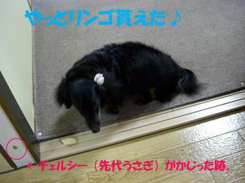 090921_3.jpg