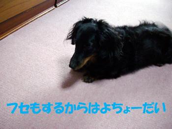 091014_2.jpg