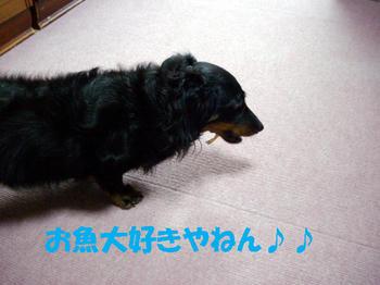091014_3.jpg