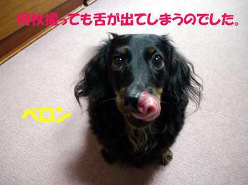 091014_7.jpg