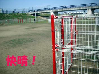 091109_4.jpg