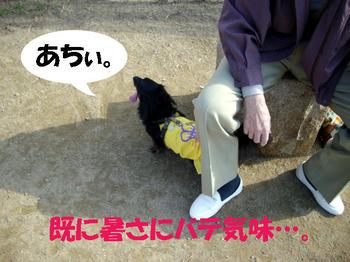091109_5.jpg