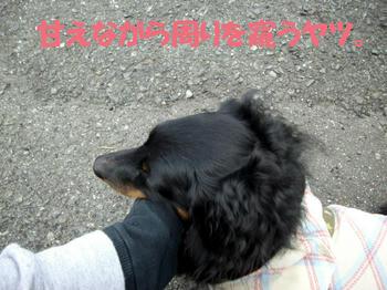 100320_3.jpg