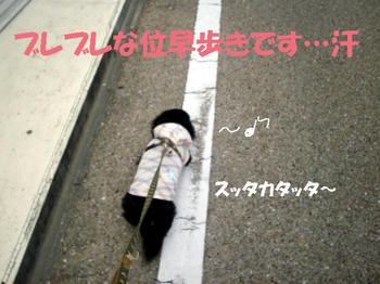 100320_5.jpg