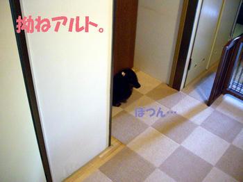 100423_1.jpg
