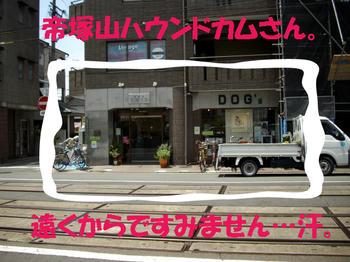 100610_3.jpg