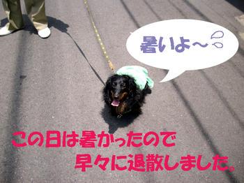 100610_4.jpg