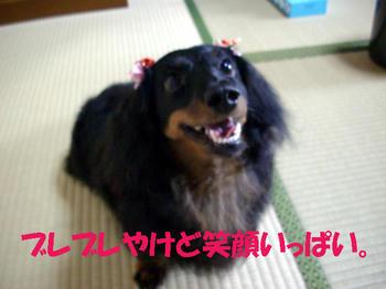 100617_3.jpg