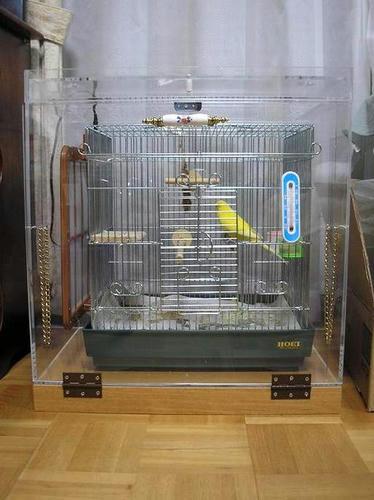 ハッピーケース アクリル鳥かご鑑賞ケースご使用例