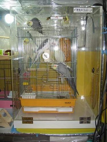 アクリル鳥かご鑑賞ケース★インコ、オウムなど鳥かごのカバー用アクリルケース 保温・防音・脂粉対策