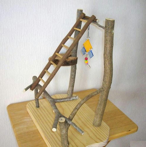 止まり木&プレイジム インコなど、小型鳥さん向け