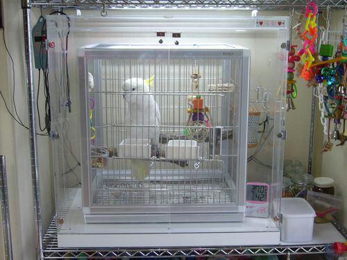 アオメキバタン らむちゃん インコ、オウムなど鳥かごのカバー用アクリルケース 保温・防音・脂粉対策