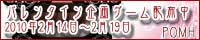 pomh_20100214_mini.jpg