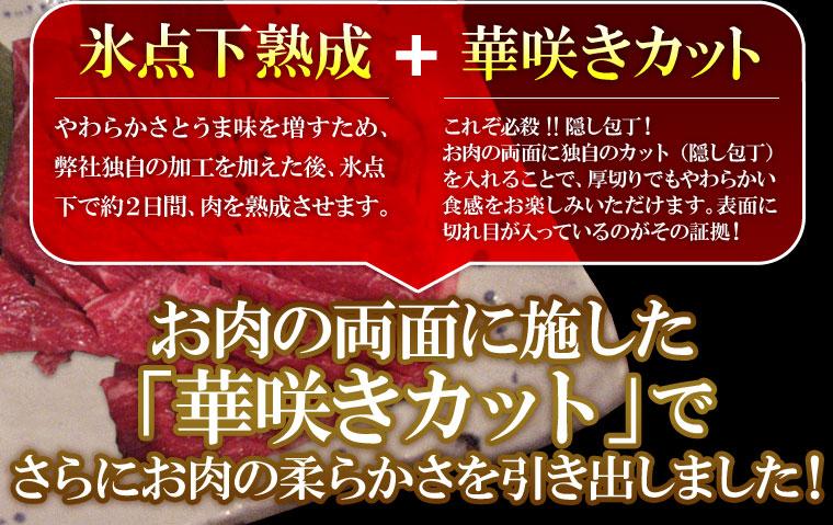 亀山社中 ファミリーセット 小【2012年2月29日まで ハンバーグ2個おまけ付き】