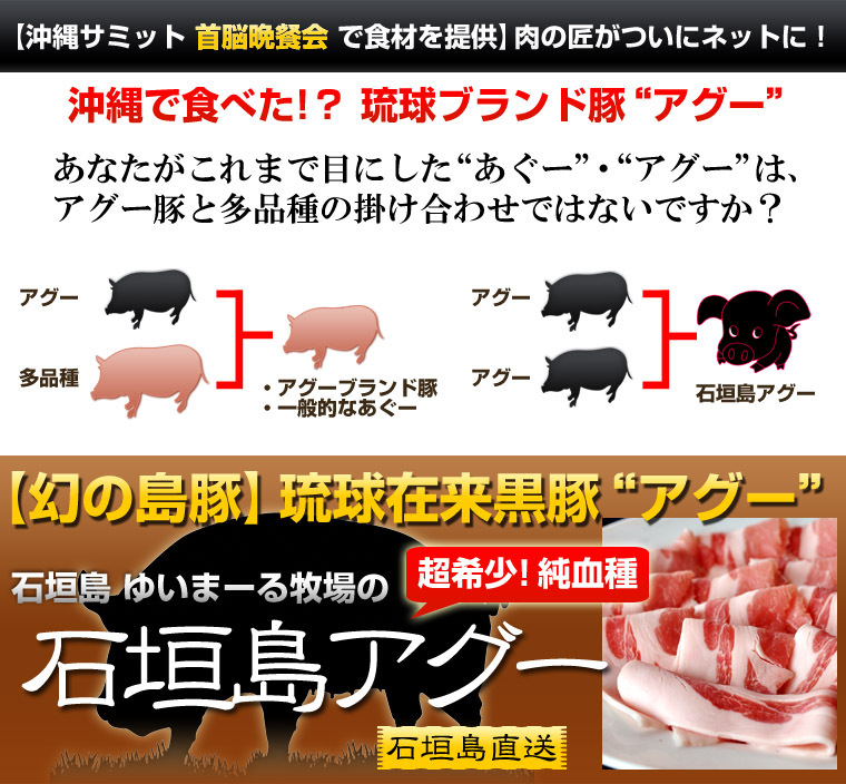 超希少!純血アグー(琉球在来種黒豚) 焼肉用3kg 箱入り 【石垣島直送】