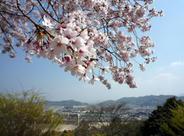 彦根城から望む彦根市の様子