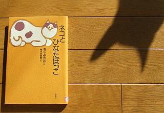 『ネコとひなたぼっこ』