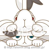 スマホケース「うさぎとねこ(RabbitandCat)」 拡大サンプル画像