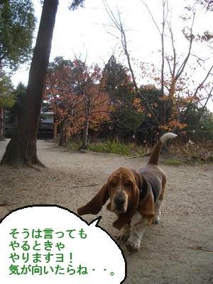 ボクちゃんマイペース.jpg