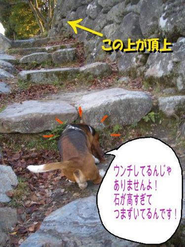 石階段.JPG