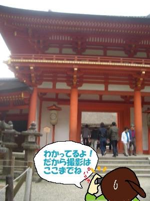 春日大社本堂入り口にて.JPG