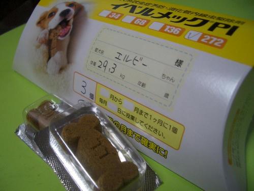 フィラリア予防薬.JPG