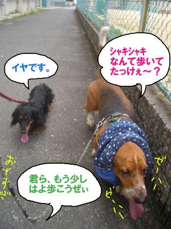 ズルズル.JPG