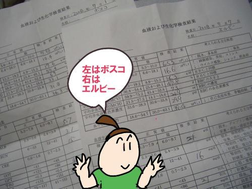 検査結果.JPG