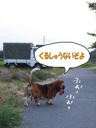 散歩でヤッホー.JPG