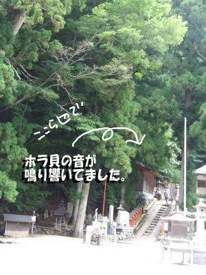 龍泉寺.JPG