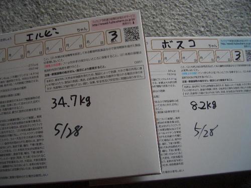 48205eb6.JPG