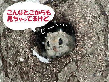 09_3_28Smomonga4riku.jpg