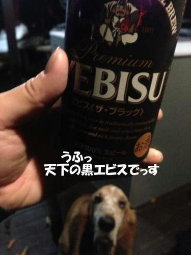 IMG_03541.JPG