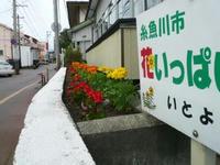 P11108731.JPG