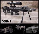 DSR1.jpg