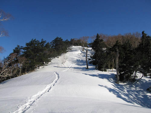 IMG_4279-s.JPG