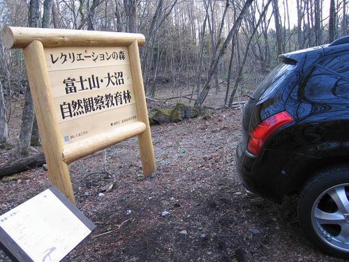 IMG_4531-s.JPG