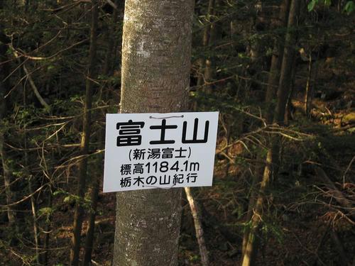 IMG_4538-s.JPG