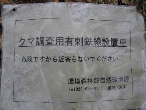 IMG_4617-s.JPG