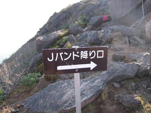 IMG_5378-s.JPG