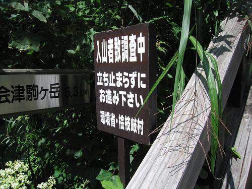 IMG_7318-s.JPG