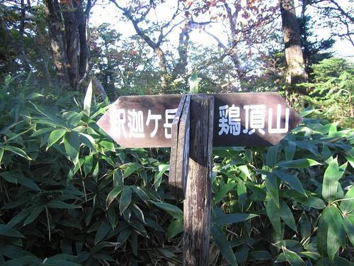 IMG_7552-s.JPG