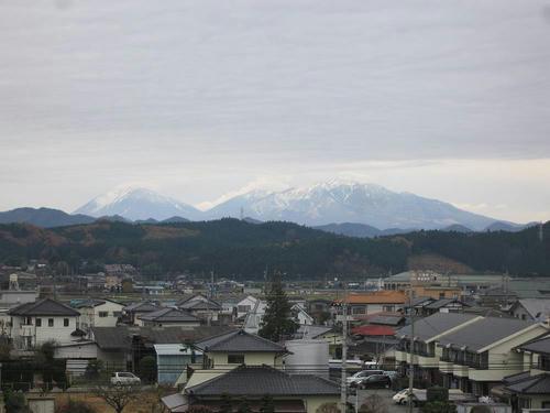 IMG_7785-s.JPG