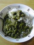 サボテングリーンカレー3