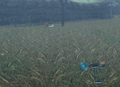 草原にフナムシ